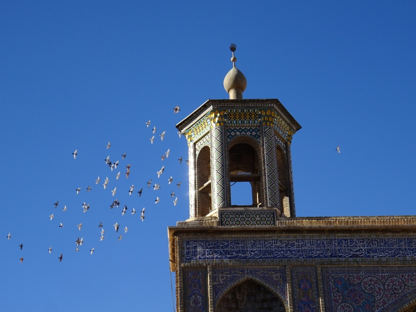 Chiraz (191)