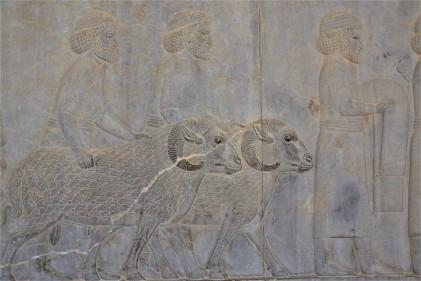 Persepolis (40)
